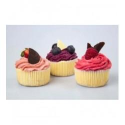 minicheesecake-s-boruvkovym-mousse