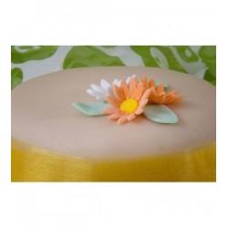 bezlepkovy-marcipanovy-dort